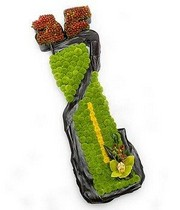 Green Orchid Golf Bag Tribute.